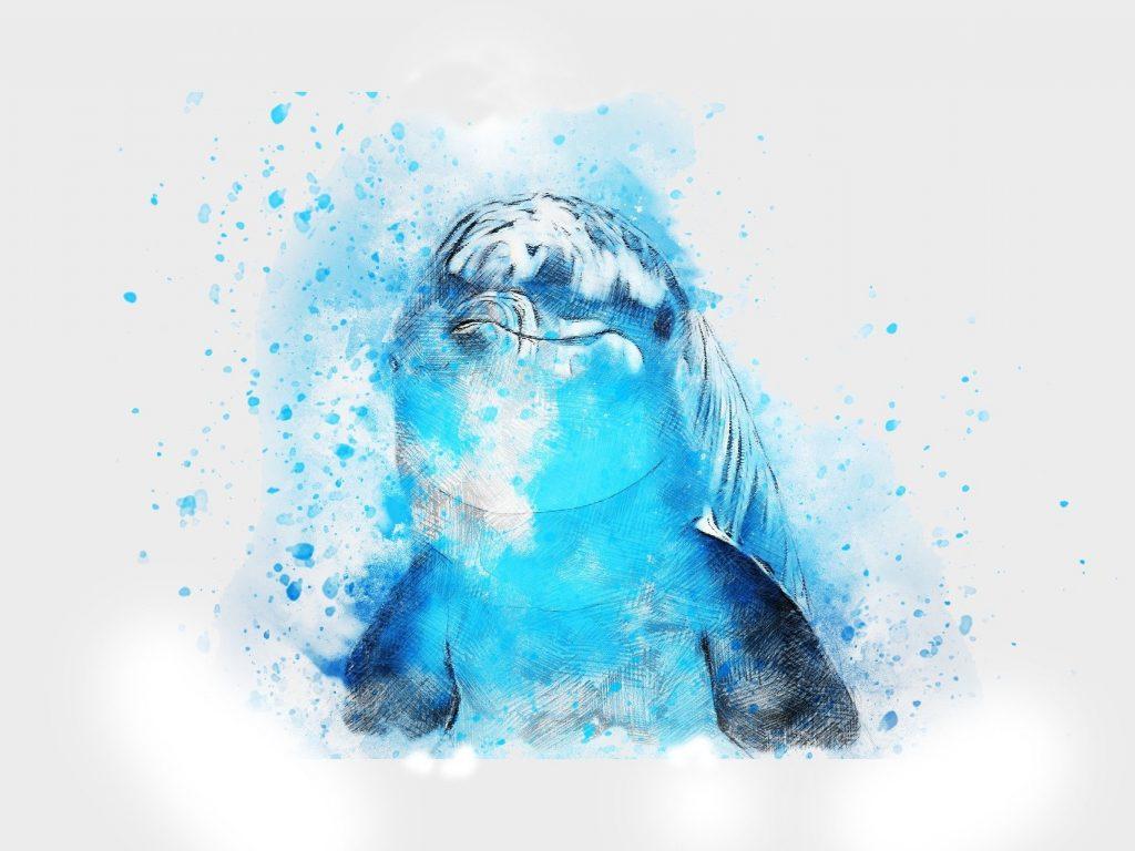 Suomen Delfins on tukijärjestö lapsuudessa seksuaaliväkivaltaa kokeneille aikuisille.